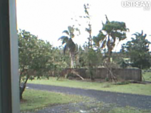 Photo of damage from cyclone Yasi in Innisfail